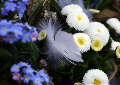 Blumen Dietz Neuenrade Spring & Love 04